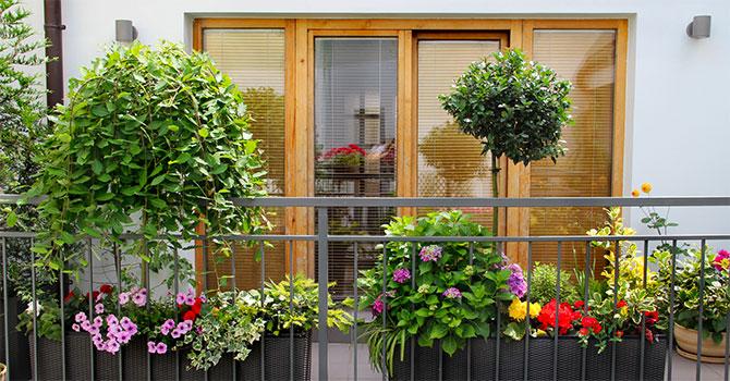 Décoration balcon et terrasse d'appartement Groupe Launay